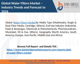 Global Water Filters Market (1).pptx