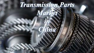 Transmission Parts Market in China.PDF