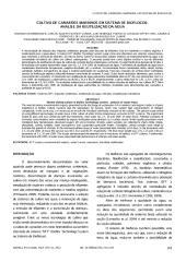 Cultivo de camarões marinhos em sistema de bioflocos análise da reutilização da água..pdf